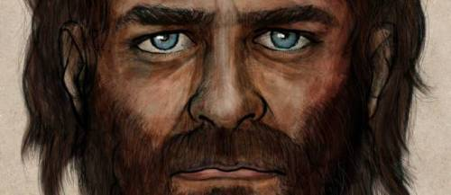 portrait-chasseur-cueilleur-mesolithique-2380718-jpg_2048243